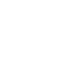 The Vinci Team at Realtor.com